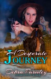 A Desparate Journey