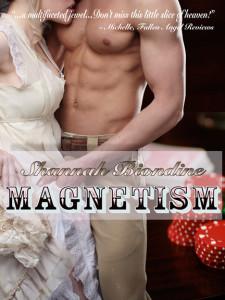 magnetismRevSW